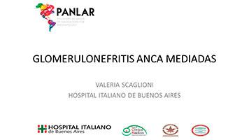 Panlar desde el Hospital Italiano de Buenos Aires