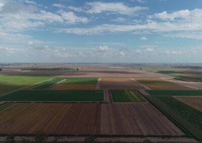 Stine Vista Campo Siembra